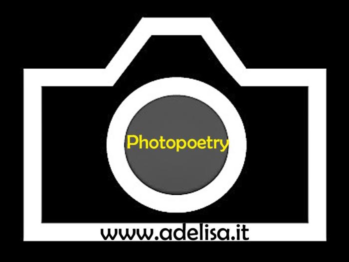 Logo Photopoetry