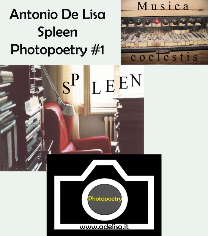 Logo Spleen- Photopoetry #