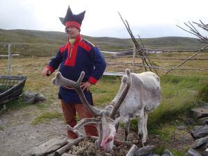 Un membro del popolo dei Sami (Lapponi) con la sua magnifica renna